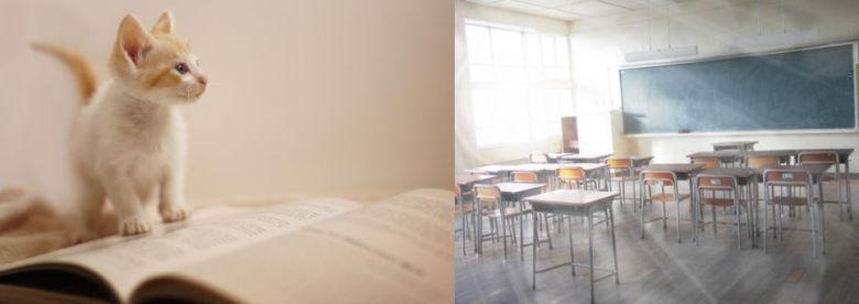 櫻井翔主演ドラマ『先に生まれただけの僕』キャスト、生徒役、あらすじ、評判など